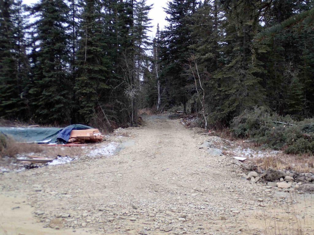 Tanana Valley RR Trail Goldstream Valley